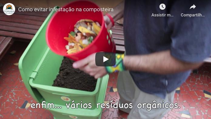 Imagem vídeo Como evitar infestação na composteira